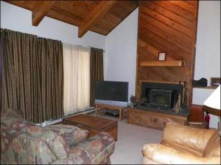 Wood-Burning Fireplace, TV, and a Sleeper Sofa in the Living Room
