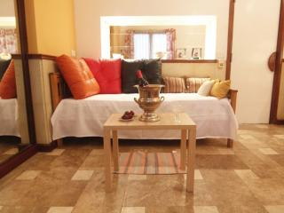 Dream, bright, 1 BED, 3 GUESTS+ WIFI, in  RECOLETA, Buenos Aires