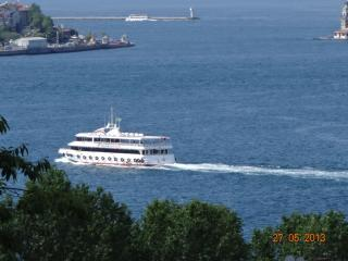 Bosphorus view SUNSHINE  &  Luxury New Decoration 6