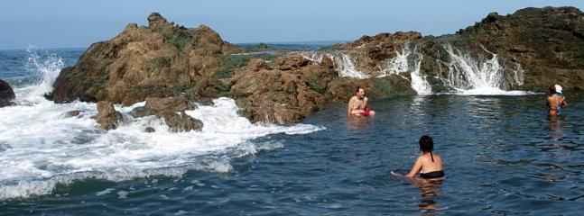 the blowhole natural pool