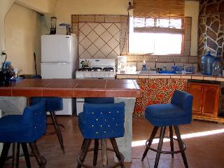 the kitchen/bar