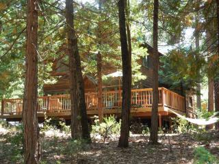 Twain Harte Cabin, Sleeps 10