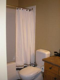 Ensuite bathroom (off master bedroom) - toilet, sink, bathtub