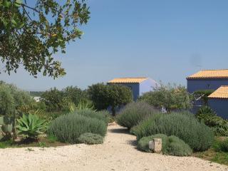 il giardino delle case blu