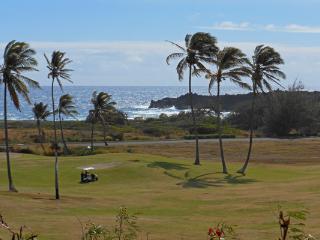 Lanai Ocean View