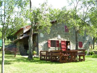 Holiday House Casini di Corte Chalet, San Romano in Garfagnana