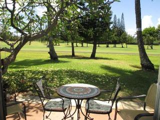 EXPERIENCE TRUE HAWAII.  Available for 4-28 night rental, please call