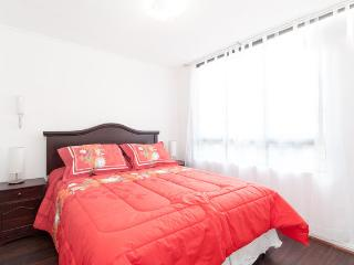 Apt in Lastarria - Bellas artes/Nexo Optimo, Santiago
