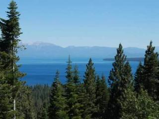 """Birds Eye View"", Tahoe City"