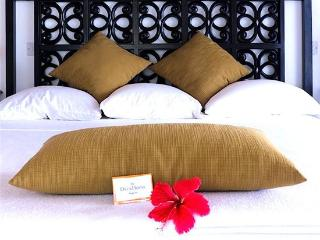 Daffodils Boutique B&B/ Garden Room- Bequia