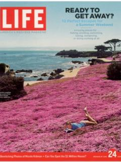 Lovers Point Park featured in Life Magazine - you can see the park from the property