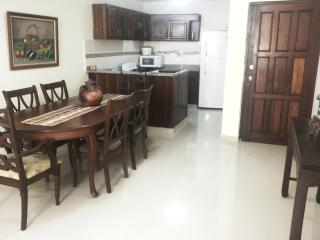 Newly designed 2 bedroom near University and Metro, Santo Domingo