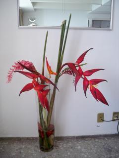 Heliconia floral arrangement