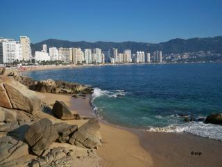 Acapulco Beachfront Condo Fabulous View Affordable Too!