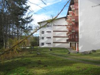 Germany Black Forest, ***apartment Eisenhauer, 625, Schluchsee