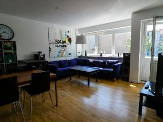 Large Copenhagen apartment at  nice Frederiksberg