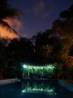nightime by pool