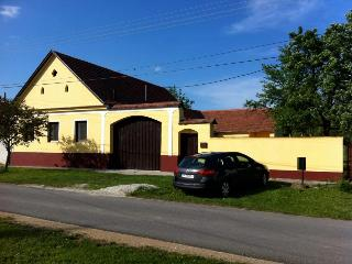 10 person Villa close to Spa Complex + Ski Resorts, Horvatzsidany