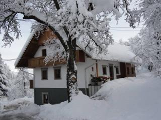 turist farm Dolinar Krainer slovenia bled lake