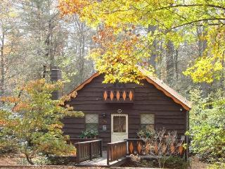 River Cabin in the Blue Ridge Mountains, Linville