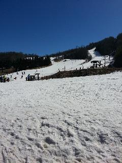 Beech Mountain Ski Resort (17 miles away)