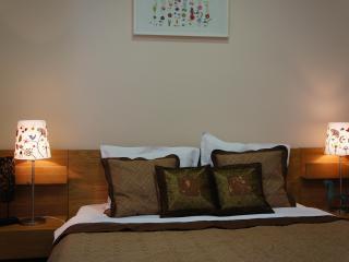 Nice one bedroom apt. close to Revolution Square