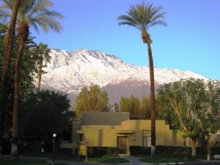 Beautiful Contemporary & Furnished! Pool +Location, Palm Springs