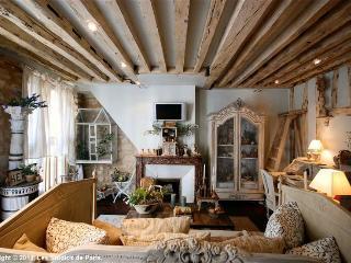 Charming Designer 1st Floor Marais Apartment, Parijs