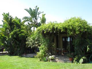 Tropical Getaway With Patio Entrance # 1