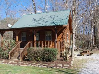 "Smoky Mountain Creek ""JONS POND"" cabin, Cosby"