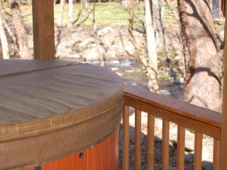 Jacuzzi with creek view on deck
