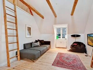 Special Copenhagen apartment in trendy area
