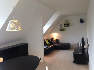 Cosy Copenhagen apartment near Skt. Hans Torv square