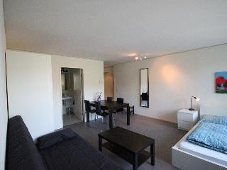 LU Nadelwehr I - Allmend HITrental Apartment Lucerne