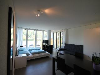 LU Gletschergarten IV - Allmend HITrental Apartment Lucerne, Lucerna