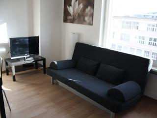 ZH Maroon - Letzigrund HITrental Apartment, Prichovice