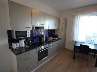 ZH Ebony - Letzigrund HITrental Apartment Zurich, Zúrich