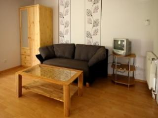 Vacation Apartment in Emmerich am Rhein - 484 sqft, quiet, modern, nice (# 4426)
