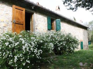 Tuscany Apartment in Old Chianti Farmhouse, Castellina In Chianti