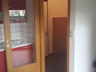 Slovenia Ljubljana rent flat 65 m2 2 rooms with garden 30 m2+ FREE PARKING HOUSE, Liubliana