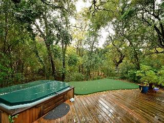 4BR/2BA Huge August discounts Home With Hot Tub, Putting Green & Close Zilker