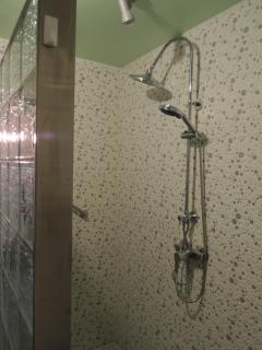 Butterfly room walk in shower