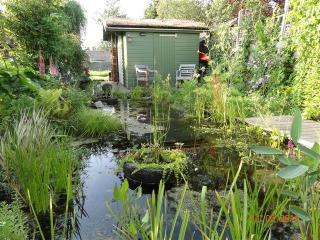 Green, sportive experience in rural Amsterdam