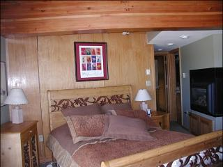 Comfortable, Convenient Condo - Great for Two Families (1391), Crested Butte