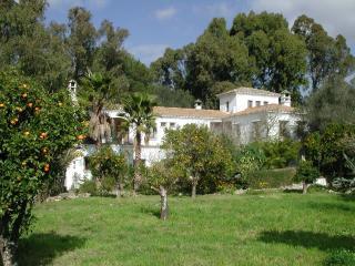 Finca San Ambrosio -La Torre - Terrace. Pool, WiFi, Vejer de la Frontera