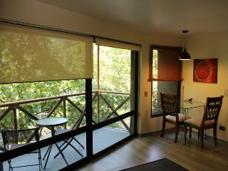 Chile vacation rental in Santiago Metropolitan Region, Santiago