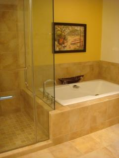 Master bath with walk in shower and large bathtub