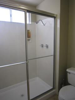 Master En-suite with walk-in shower and toilet