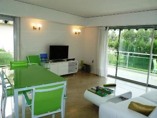 Velasquez Vert Wonderful 3 Bedroom Vacation Home with a Terrace, Cannes