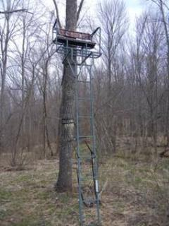 Two man tree stand on ridge